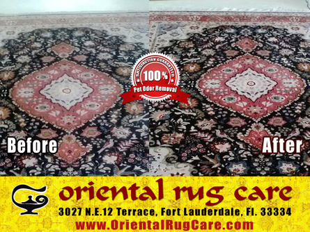 expensive area rug cleaning in fort lauderdale area rug cleaning